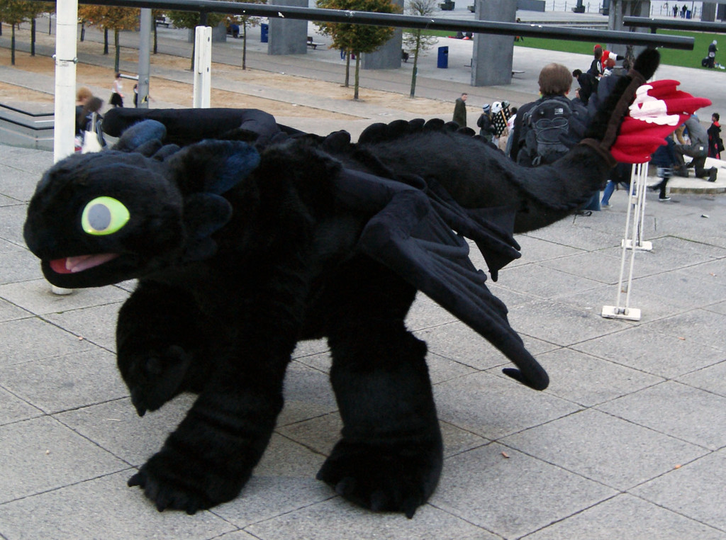 Cosplay Island View Costume Refira Toothless