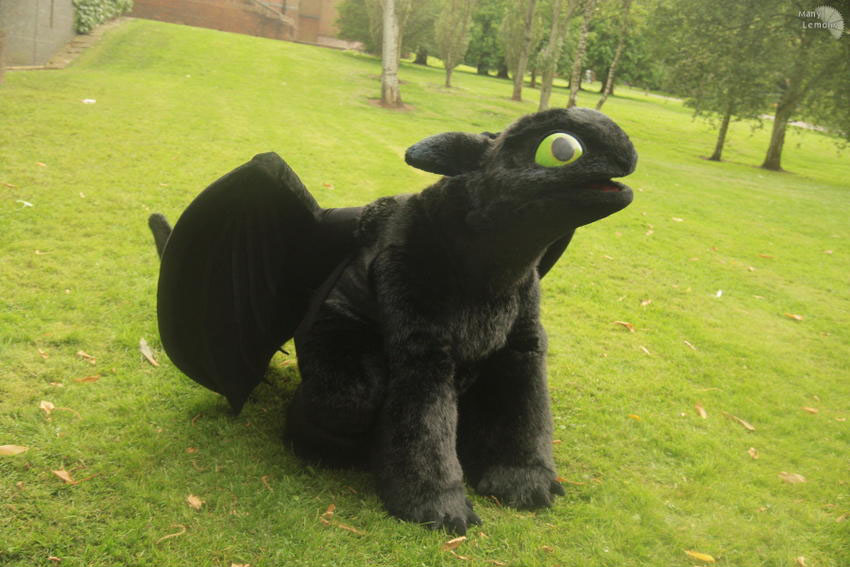 toothless how to train your dragon costume
