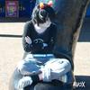 Avox avatar